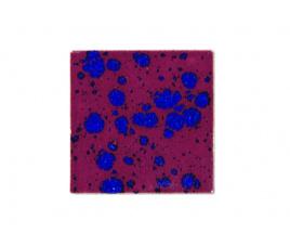 Szkliwo płynne Botz 9512 Dzika wiśnia - 800 ml