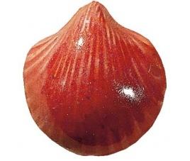 Szkliwo proszkowe Wolbring 470810 Magnolia